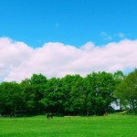 Camping Maastricht